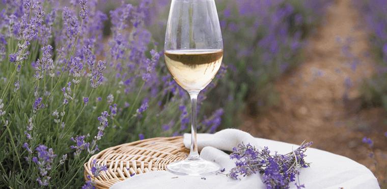 La frescura de la primavera en los vinos blancos